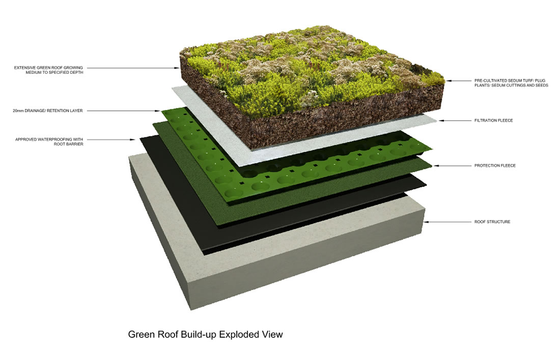 Exploded Greenroof section